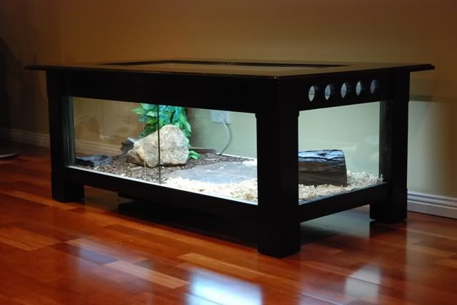 Build a coffee table enclosure (Is this tacky? Hahah) Not sure if I like this or not. Maybe for a future office if we ever become really well-known/successful...