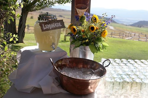 Easy, simple and fun way to serve drinks at an outdoor wedding. I love the copper bucket with ice and a scoop.
