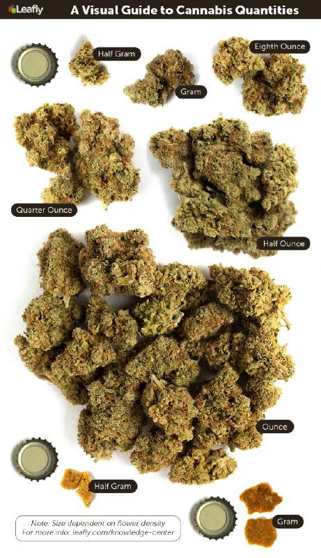 Weed Measurements: The Marijuana Metric System