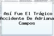 http://tecnoautos.com/wp-content/uploads/imagenes/tendencias/thumbs/asi-fue-el-tragico-accidente-de-adriana-campos.jpg Adriana Campos. Así fue el trágico accidente de Adriana Campos, Enlaces, Imágenes, Videos y Tweets - http://tecnoautos.com/actualidad/adriana-campos-asi-fue-el-tragico-accidente-de-adriana-campos/