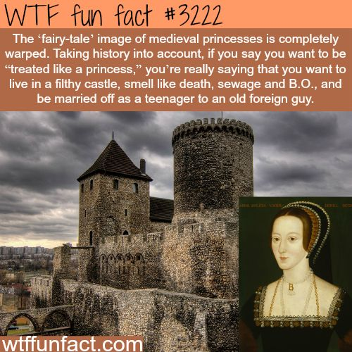 Medieval Times Quotes: Best 25+ Medieval Princess Ideas On Pinterest