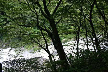 水煙を上げて流れ下る箒川。ここにいるだけでエネルギーがチャージされるような、不思議な感覚。[2007/7 塩原渓谷箒川布滝(栃木県)]© 2010 風旅記(M.M.) 風旅記以外への転載はできません...