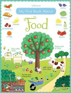 My First Book About Food - Where Does Food Come From?   Usborne