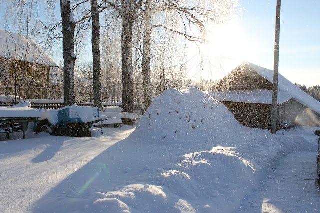 Жизнь горожанки в деревне: (-16)  Солнце, снег, чтение и поздравление!