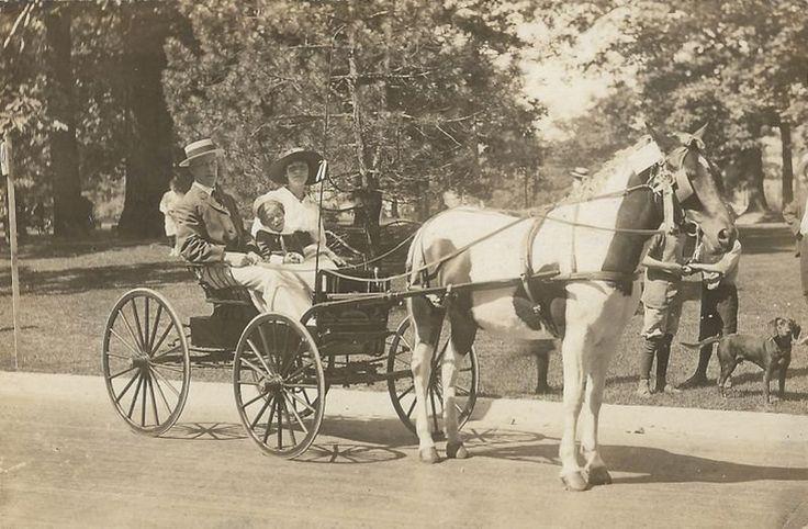Spectacle équestre de Toronto Antique des par AllHorseVintage
