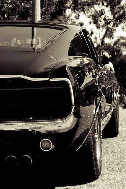 M - Fastback