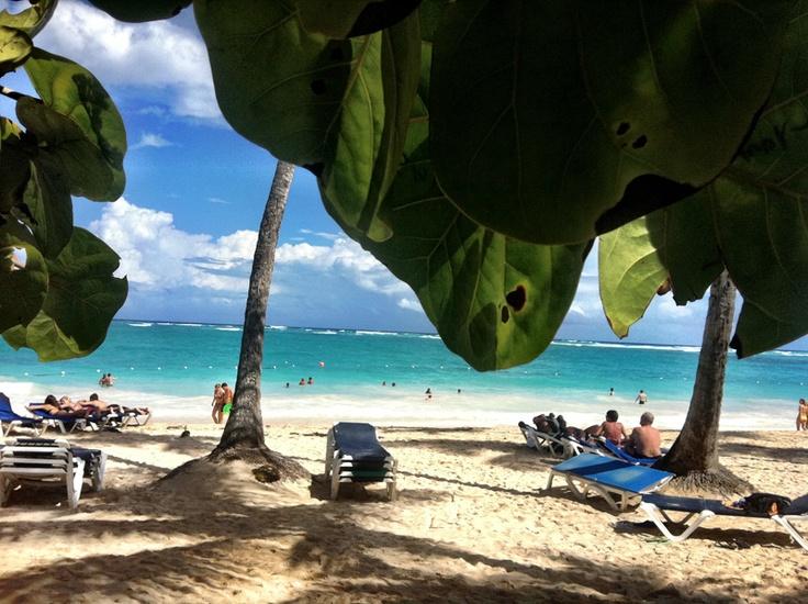 Dominican republic essay