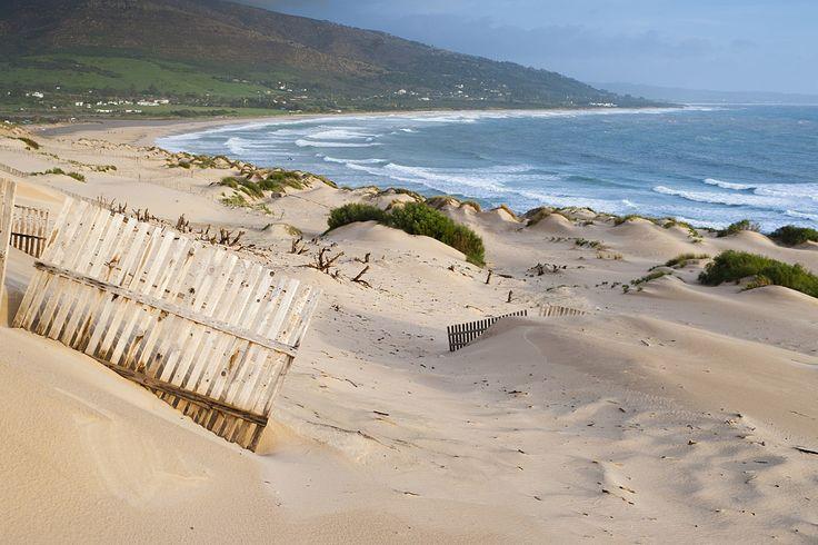 Dunas y mar en playa Punta Paloma, en Tarifa, Cádiz | Galería de fotos 39 de 50…