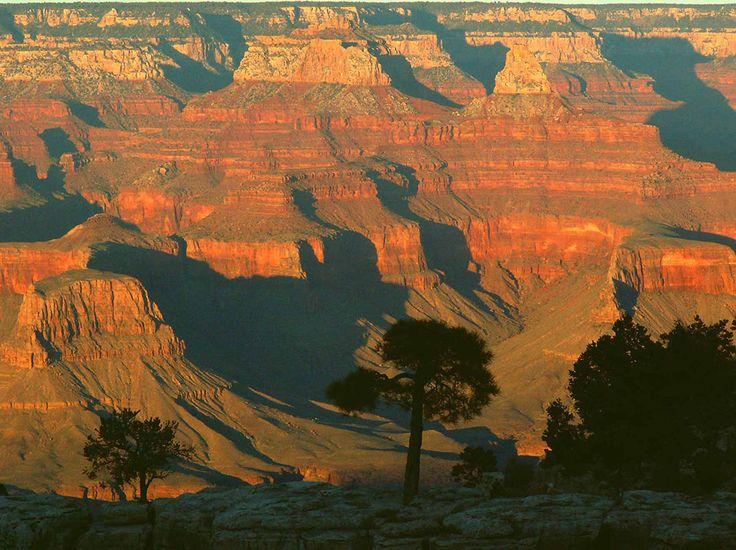 C'est peut-être l'un des lieux les plus connus du monde. Le Grand Canyon, ce parc national se situant en Arizona, a été reconnu en 1979 comme faisant partie du patrimoine mondial de l'humanité par l'UNESCO. Fondé en 1919, le parc accueille chaque année plu...