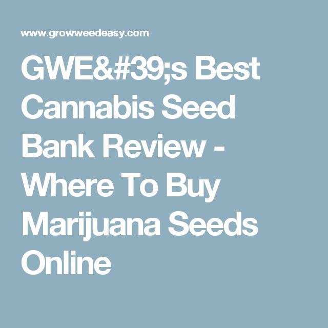 GWE's Best Cannabis Seed Bank Review - Where To Buy Marijuana Seeds Online