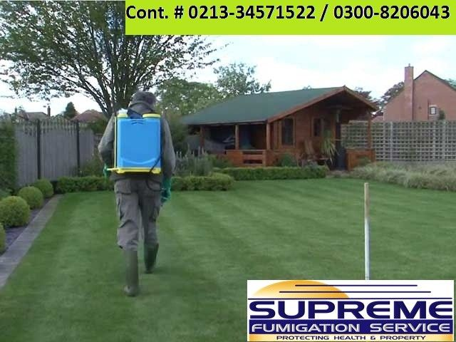 Supreme #fumigationservices  control and protect you from all pests that you might think of. Whether you have ants in your pantry kitchen, lice in your bedroom or termites in your ceiling, we have you covered. Supreme Fumigation Services also protect your family and property from cockroaches, rodents (rats), bed bugs, mosquitoes, termites and fleas, moles, moths, bees, squirrels, cluster flies and wasps and Clean Your Water Tank from dust and bacteria. Our Pest Services Solution. An eff
