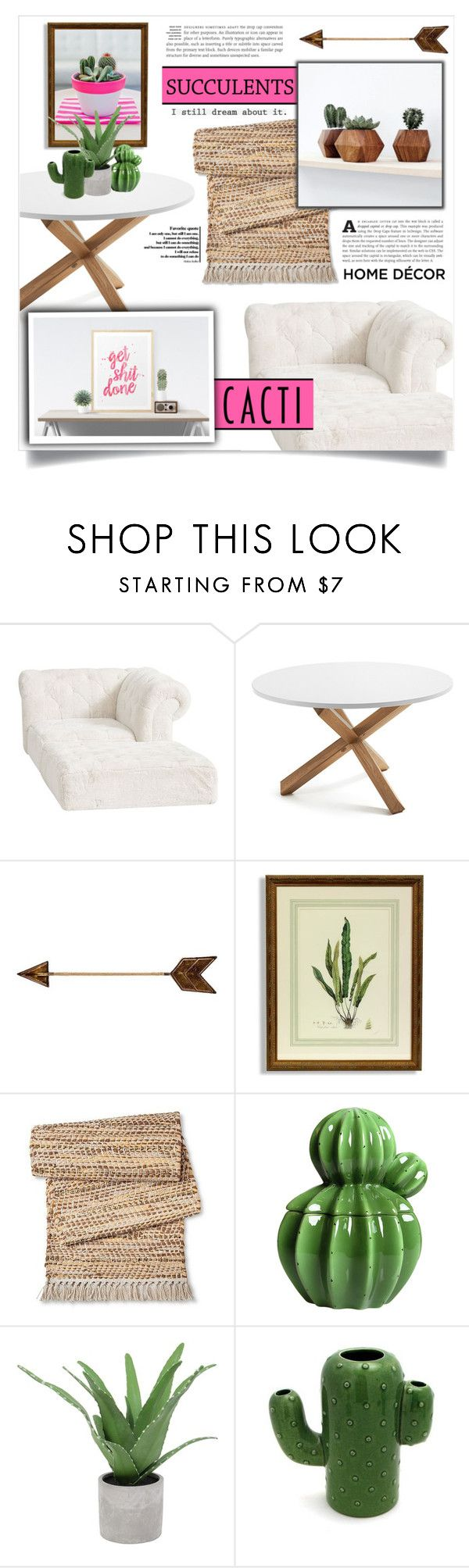 Threshold home decor shop for threshold home decor on polyvore -  Cacti Succulents By Dolly Valkyrie On Polyvore Featuring Interior Interiors Cactideliciouspbteeninterior Decoratinginterior