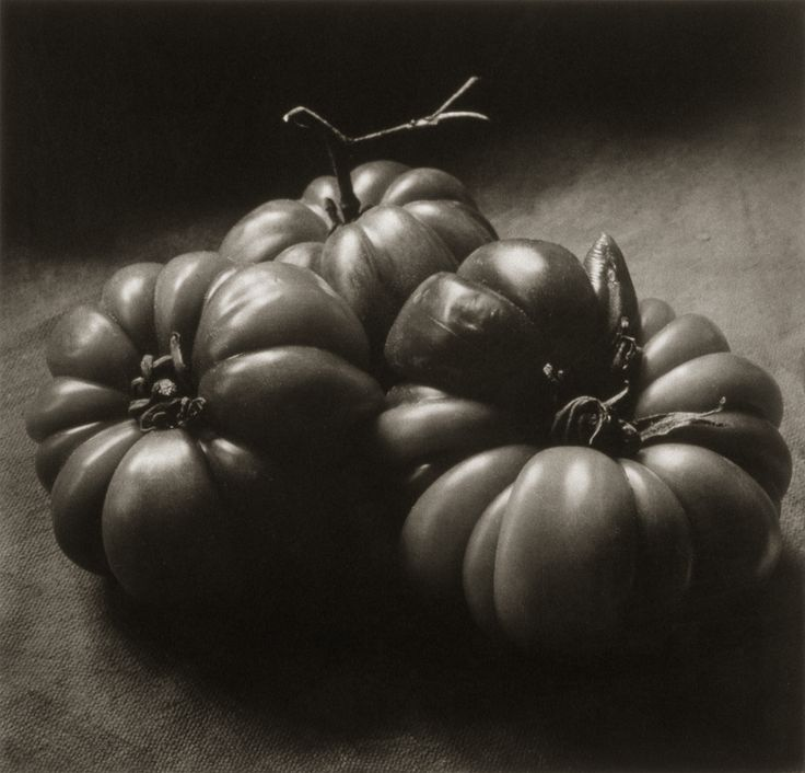 Three Italian Tomatoes ©Cy DeCosse Fine Art Photography. The Beauty of Food Collection. Limited edition platinum-palladium print. CyDeCosse.com #photography #art #food