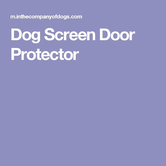 Decorating Screen Door Protectors Inspiring Photos