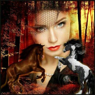 Krásný půvab ženy a koníků