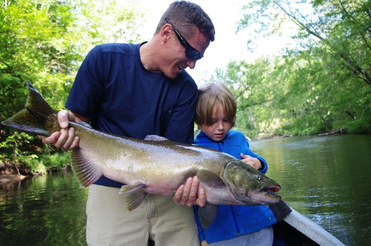 51 best fishing in the midwest images on pinterest for Fishing the midwest