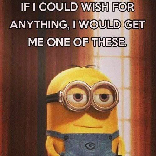 Minion Quotes Wtf: If I Could Wish For..