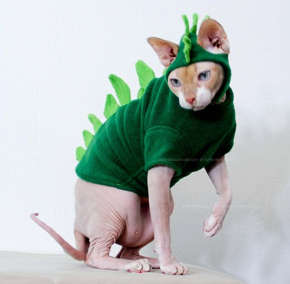 Pet Costume Godzilla Dinosaur Halloween Cat by ...