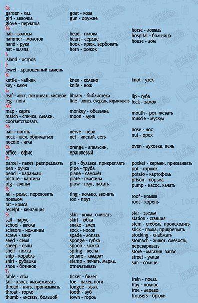 850 слов на английском языке, выучив которые, вы будете свободно говорить! | thePO.ST