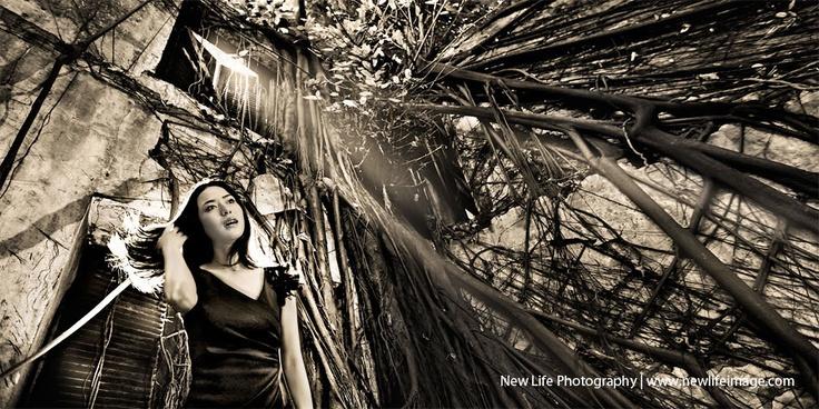 Potrait: Angelina   New Life Photography