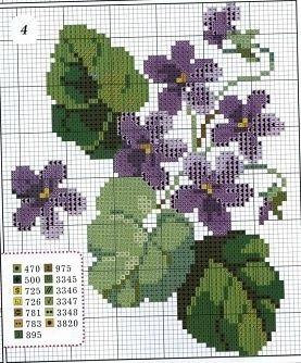 Gallery.ru / Фото #25 - Фиолетовые цветы. - yasochka61