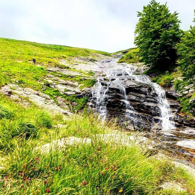 Parco Nazionale Del Gran Sasso E Monti Della Laga nel Assergi, Abruzzo