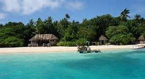 Image result for Tonga Island  @michaelOXOXO @JonXOXOXO @emmaruthXOXO  #MAGICALTONGA