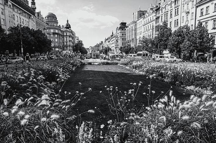 Summer Prague. Black And White by Jenny Rainbow  #JennyRainbowFineArtPhotography  #FramedPrints #WallArt  #Prague #BlackAndWhite #Architecture