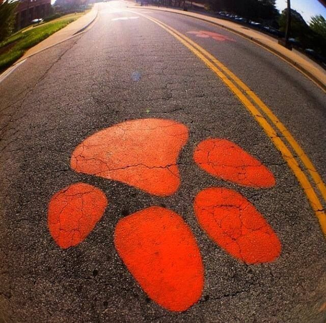 Go Tigers! Paw prints from Anderson to Clemson! & 823 best Clemson images on Pinterest | Clemson tigers Clemson ...