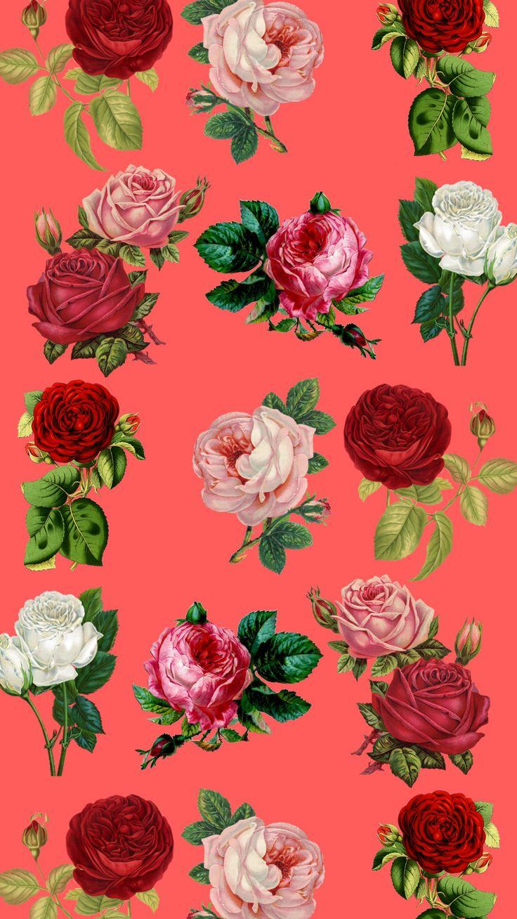 Red Roses iPhone 8 wallpaper