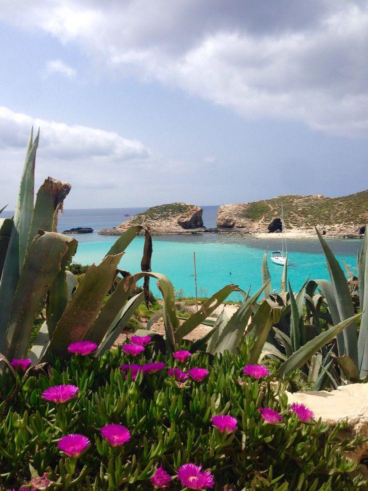 Malta part 2 - Walking Comino! - gemtherese