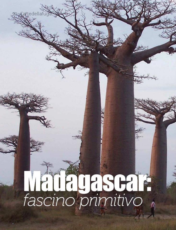 Madagascar fascino primitivo  Intown#29 vi porta in un viaggio privato ed esclusivo con kel12, tra una flora selvaggia, grandi baobab, lemuri e sorrisi: partiamo alla scoperta del Madagascar