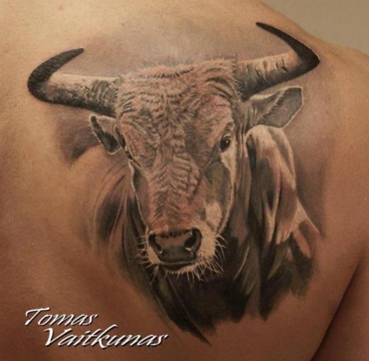 Bull Head Tattoo