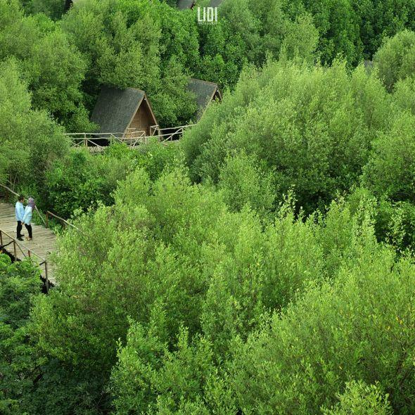 Prewedding jakarta, pantai indah kapuk, mangroves, forest