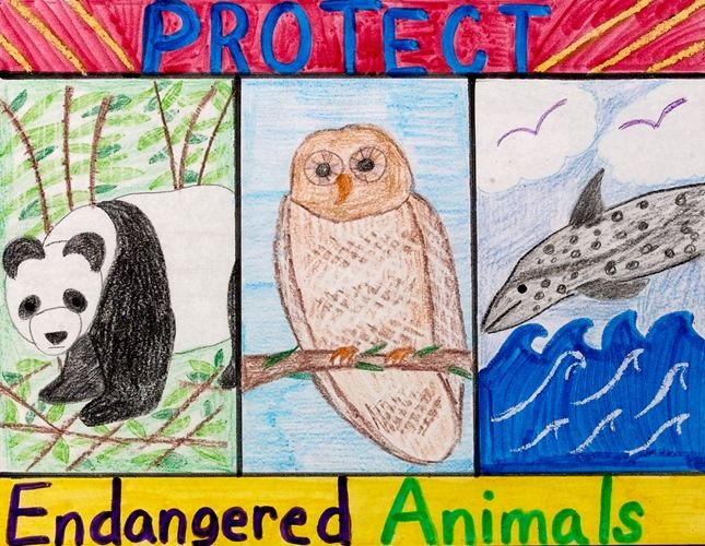 Erase It! Endangered Animals lesson plan - I think it would be cool to have each student choose an endangered species in our state and make a vivid display on various aspects of that animals story.  Also, check out the adaptations.