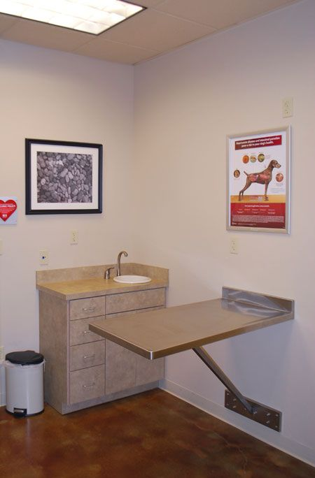 The four veterinary exam rooms at Animal Care Hospital in Lafayette, La. consist of one sick patient room, one puppy exam room, one large dog exam and one multi-purpose exam/euthanasia room - dvm360