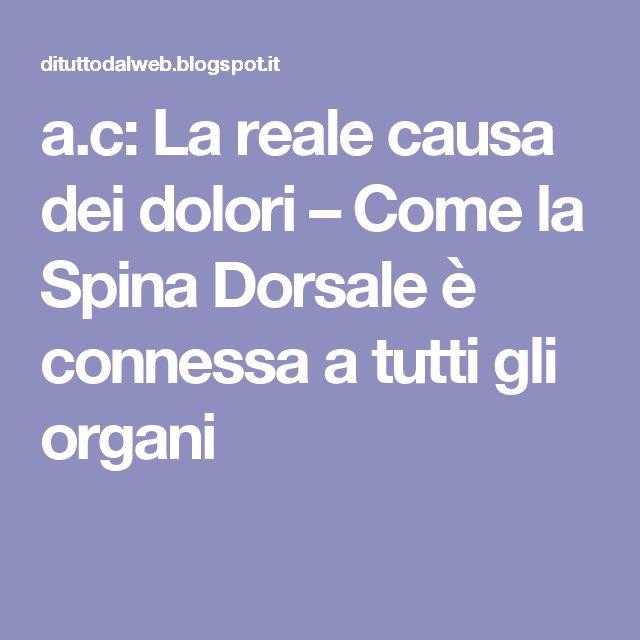 a.c: La reale causa dei dolori – Come la Spina Dorsale è connessa a tutti gli organi
