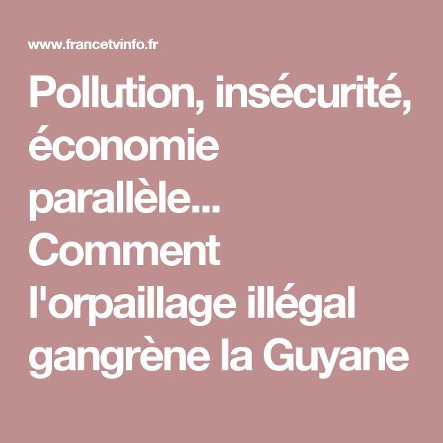 Pollution, insécurité, économie parallèle... Comment l'orpaillage illégal gangrène laGuyane