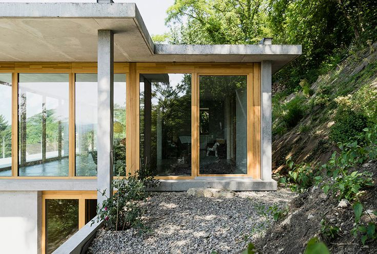 at germany's southern-most tip, architect gian salis has built a two-storey home on an inclined site overgrown with wildlife.