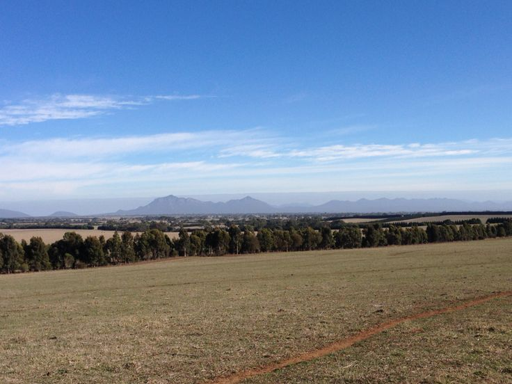 View of #thegrampians from Brie Brie.