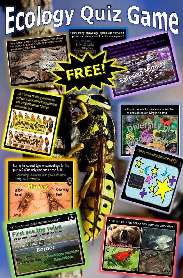 2028 best Sixth Grade Free Stuff images on Pinterest