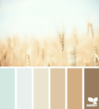 Soft, relaxing tones perfect for a high Intimacy value. Also nice for Clarity. #VoiceValues | wheat tones via Design-Seeds | commentary via The Voice Bureau at AbbyKerr.com