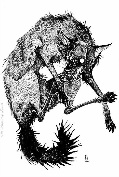 Image result for medieval woodcut wolf