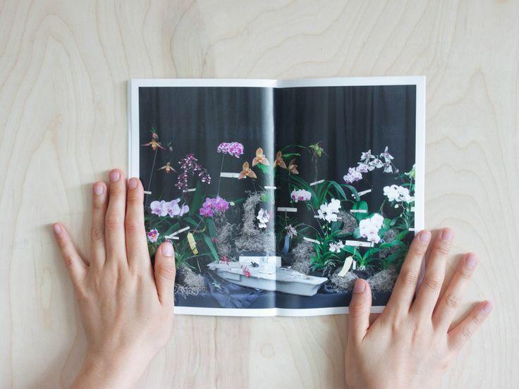 Orchid Show • BOOK | DEBBIE CARLOS SHOP