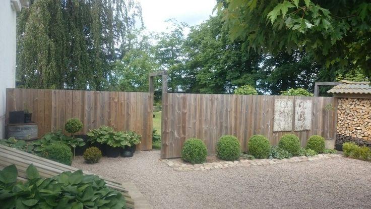 Plank mellan bilar och trädgård (entre)