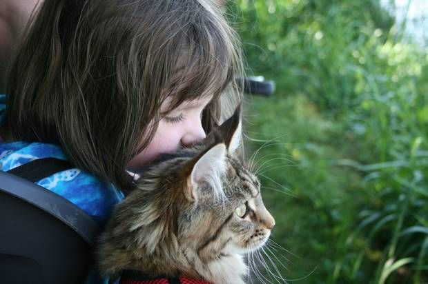 Five-year-old autistic artist Iris Grace finds inspiration in her cat, Thula