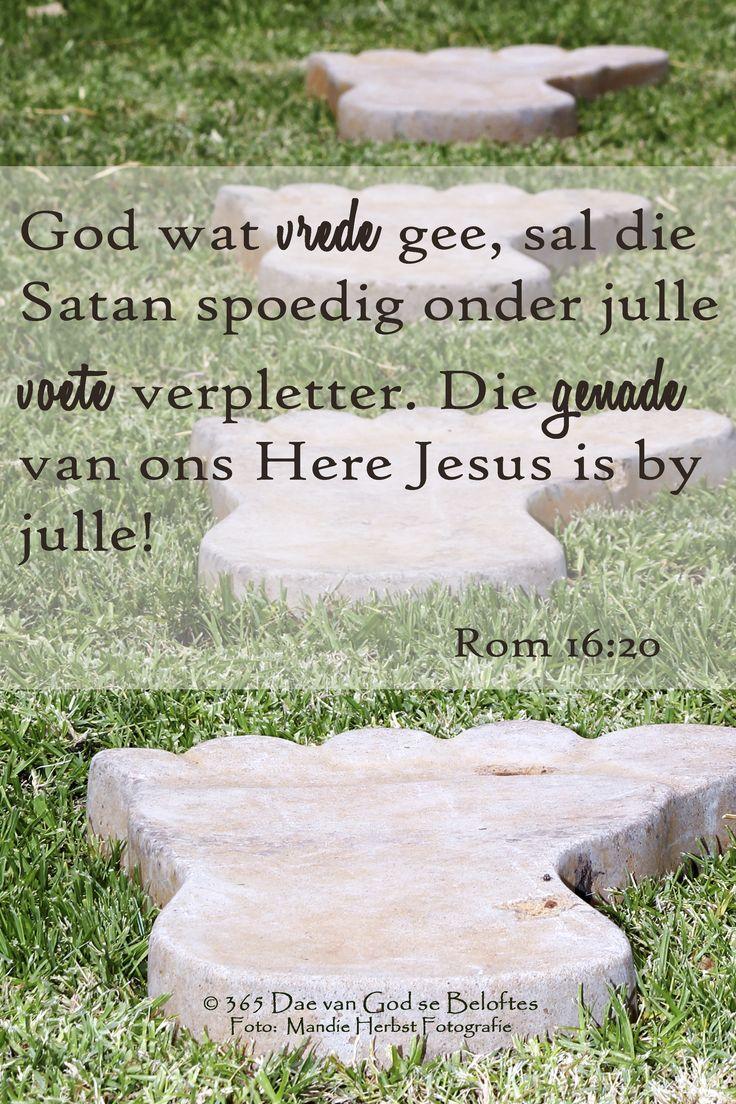 Bybelvers: Rom 16:20 God wat vrede gee, sal die Satan spoedig onder julle voete verpletter. Die genade van ons Here Jesus is by julle!