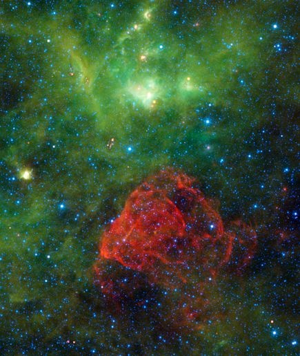 A red rose springs from a stellar grave in a new picture of the supernova remnant Puppis A taken by NASA's Wide-field Infrared Survey Explorer, or WISE, space telescope.