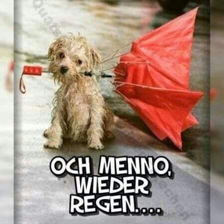 Und wieder ist mein Schirm im Eimer, so ein Mistwetter aber auch.
