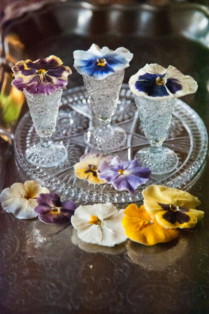 1000 Images About Crystallized Edible Flowers On